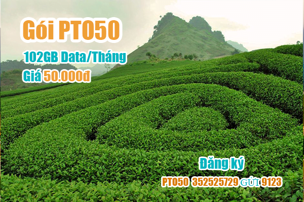 Gói PTO50 Viettel miễn phí 102GB cho khách hàng tại Phú Thọ